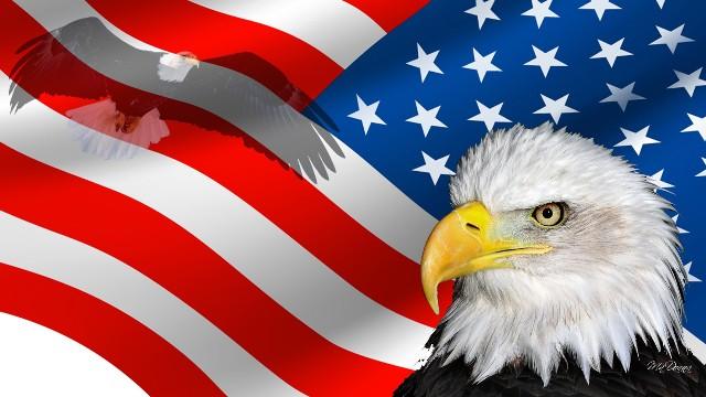 20 Fakte interesante për Amerikën dhe historinë e saj