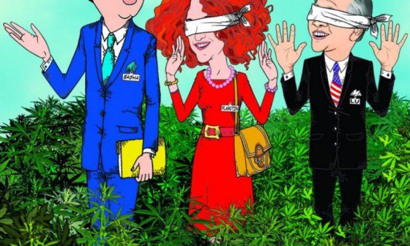 Bujar Kapexhiu ironizon Donald Lu dhe Vlahutin me një karikature thumbuese