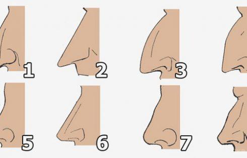 Forma e hundës tregon karakterin tuaj